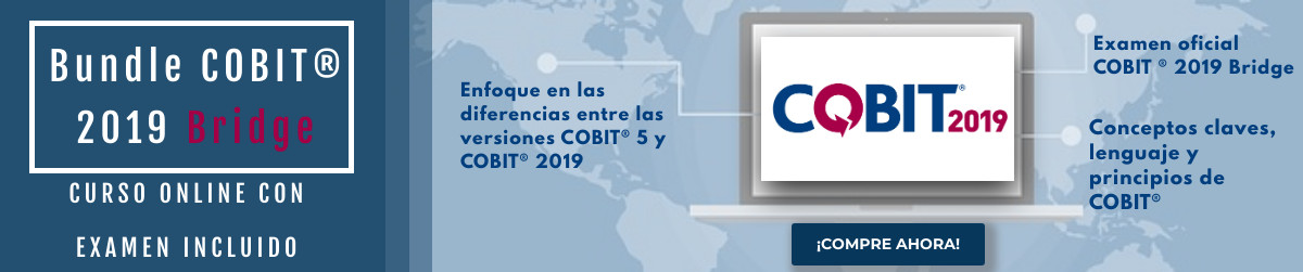 Cobit 2019 Bridge ESP