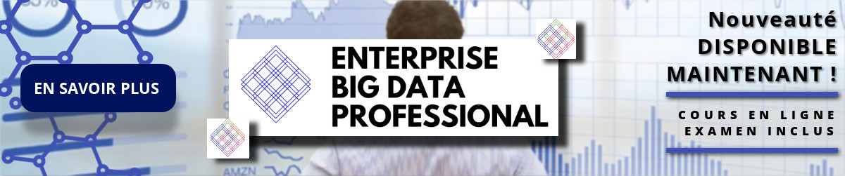 Entreprise Big Data   FRA