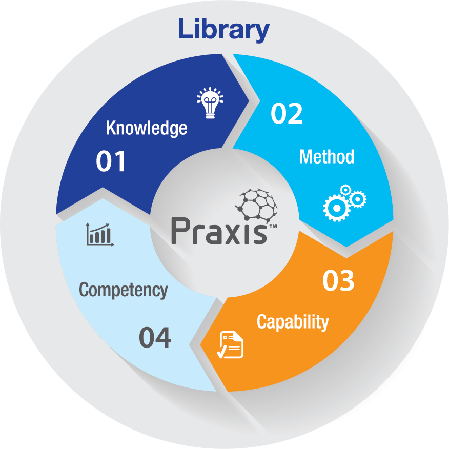 PraxisFramework Model